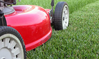 Lawn Care in Oklahoma City OK Lawn Care Services in Oklahoma City OK Quality Lawn Care in Oklahoma City OK